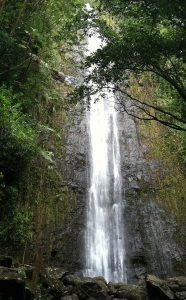 Mānoa Falls